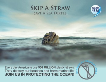 Skip a Straw – Save a Sea Turtle