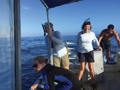 From the Log of Persevere: Swimming with Whales in Tonga