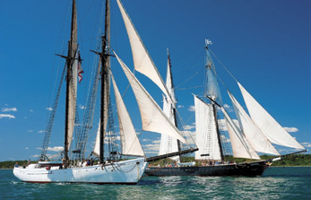 https://windcheckmagazine.com/app/uploads/2019/01/black_dog_tall_ships-1.jpg