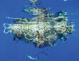 Update on Plastic Gyres Science by SEA