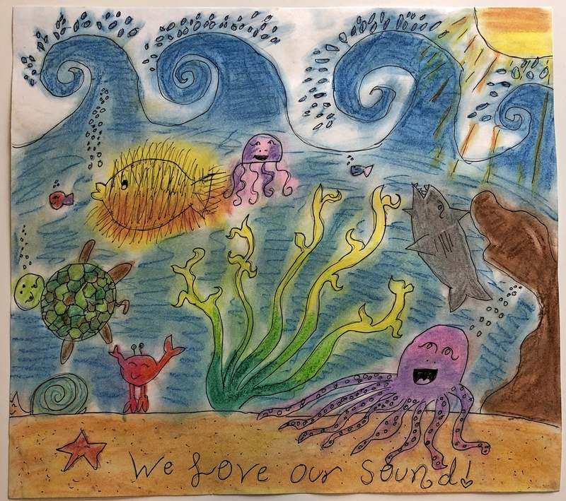 NESS Drawing Contest: Long Island Sound and its Watershed