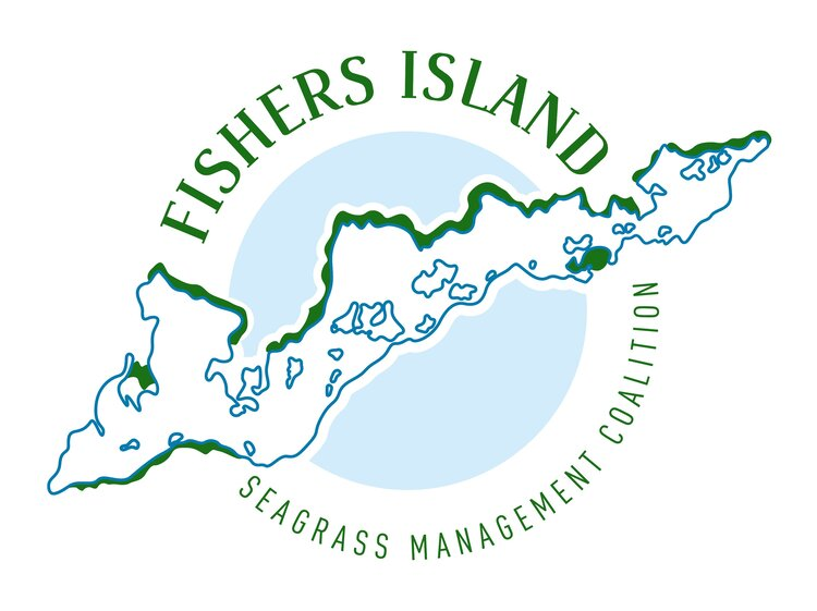 Local Knowledge Wanted! Fishers Island Seagrass Webinar is Monday, August 10